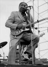 Muddy Waters, Capital Radio Jazz Festival, London, 1979. Creator: Brian Foskett.