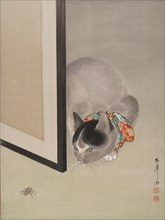 Cat Watching a Spider, ca. 1888-92. Creator: Toko Oide.