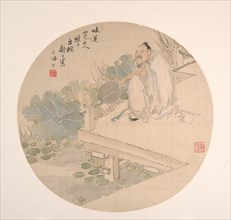 Admiring Lotus. Creator: Shu Hao.