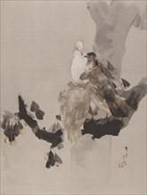 Pigeons in a Tree, ca. 1887. Creator: Watanabe Seitei.