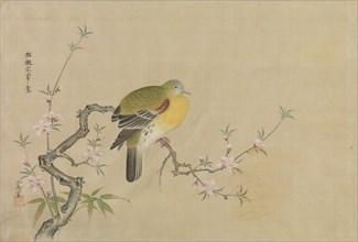 Album of Copies of Chinese Paintings, 17th century. Creator: Kanô Yôboku Tsunenobu.