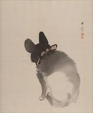 Cat Seen from Behind, 1868. Creator: Gyokusho Kawabata.