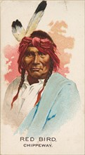 Red Bird, Chippeway, from the American Indian Chiefs series