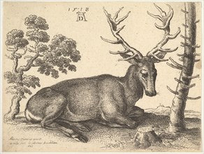 Stag lying to right, 1649. Creator: Wenceslaus Hollar.