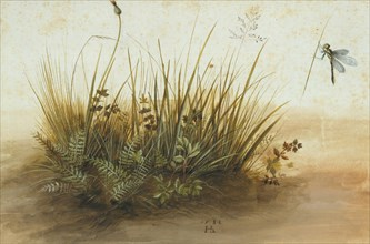 A Small Piece of Turf, 1584.