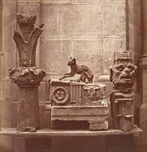 Le Chat Momifié (trouvé dans les fouilles de Saint-Germain-en-Laye), ca. 1862.