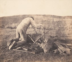 Jack Gralloching a Stag, ca. 1856-58.
