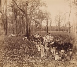 12 O'clock in the Deadening, ca. 1891. (Jas Richardson's Walnut Grove Plantation, Mississippi Valley Route).