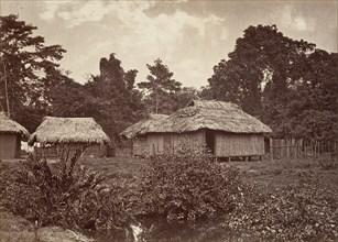 Tropical Scenery, Turbo Village, 1871.