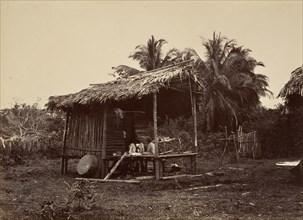 Tropical Scenery, Native Hut, Turbo, 1871.