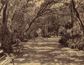Sookh-Vilas Palace Garden, 1880-90.