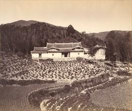 Teafield & Josshouse at Peling, ca. 1869.