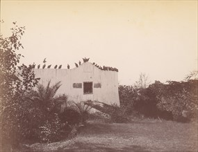 Birds on Roof of Small Building, 1860s-70s.