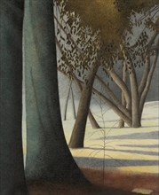 Beech Trunks, 1945. Creator: Spilliaert, Léon (1881-1946).