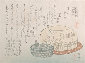 Insect Catcher and Potted Herbs, 19th century., 19th century. Creator: Shinsai.