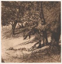 Sub Tegmine..., 1859., 1859. Creator: Francis Seymour Haden.