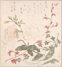 Lily, Violets, Cherry Blossoms, Forsythia, and a Branch of Red Maple, 18th-19th century.