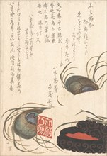 Seal-stone and Seal-ink with Peacock Feathers, from Spring Rain Surimono Album (Harusame surimono-jo), vol. 1, probably 1817.
