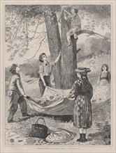 Chestnutting (Every Saturday, Vol. I, New Series), October 29, 1870.