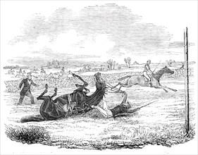 The Earl of Wilton's fall