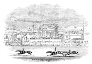 "Red Deer winning the ""Chester Cup"" - from a sketch made on the spot"