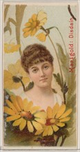Marigold: Disdain, from the series Floral Beauties and Language of Flowers (N75) for Duke brand cigarettes, 1892.