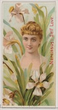 Narcissus: Self Love, from the series Floral Beauties and Language of Flowers (N75) for Duke brand cigarettes, 1892.