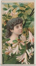 Honeysuckle: Fidelity, from the series Floral Beauties and Language of Flowers (N75) for Duke brand cigarettes, 1892.