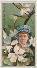 White Violet: Candor, from the series Floral Beauties and Language of Flowers (N75) for Duke brand cigarettes, 1892.