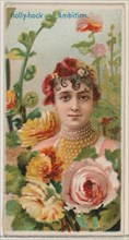 Hollyhock: Ambition, from the series Floral Beauties and Language of Flowers (N75) for Duke brand cigarettes, 1892.