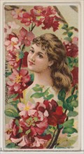 Azalea: Attraction, from the series Floral Beauties and Language of Flowers (N75) for Duke brand cigarettes, 1892.