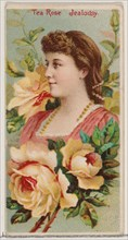 Tea Rose: Jealousy, from the series Floral Beauties and Language of Flowers (N75) for Duke brand cigarettes, 1892.