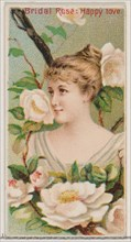 Bridal Rose: Happy Love, from the series Floral Beauties and Language of Flowers (N75) for Duke brand cigarettes, 1892.