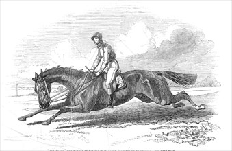The Baron, the winner of the Great St. Leger 1845 - drawn by Herring, 1845. Creator: Unknown.