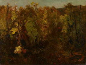 La Vigne [The Vine]