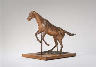 Horse Balking