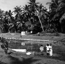 Paysage dans la région de Colombo, à Ceylan