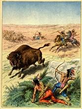 La chasse au bison