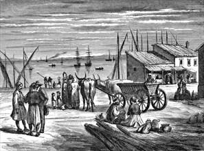 Le port du Pirée. 1862