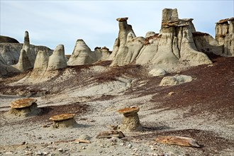 NM00297-00...NEW MEXICO - Hoodoos of the Bisti Wilderness area.