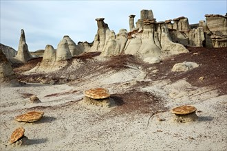 NV00299-00...NEW MEXICO - Hoodoos of different shapes and sizes in the Bisti Wilderness area.