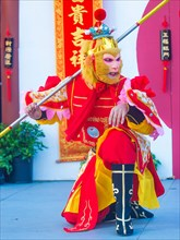 Actor dressed as a Monkey King perform at the Chinese New Year celebrations held in Las Vegas