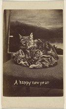 A happy new year; Henry Pointer, British, 1822 - 1889, about 1865; Albumen silver print
