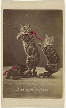 Rinking at Brighton; Henry Pointer, British, 1822 - 1889, about 1865; Hand-colored albumen silver print