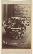 We wish you a merry Christmas; Henry Pointer, British, 1822 - 1889, about 1865; Albumen silver print