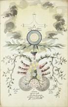 Omnia ab uno natura prima materia, F. de la Rose-Croix, Manly Palmer Hall collection of alchemical manuscripts, 1500-1825