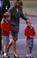 L'arrivée de Diana et les deux princes.