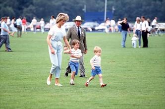Prince William, prince Harry et princesse Diana