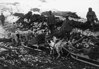 Bataille de l'Isonzo, 1917