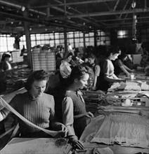 Manufacture de collants pour femmes